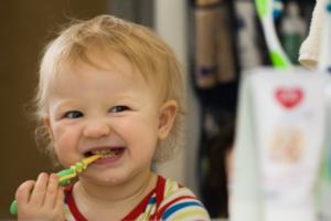 Коренные зубы у взрослого и ребнка